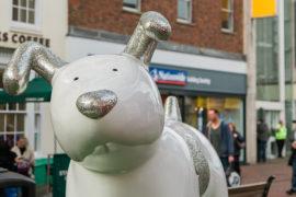 Snowdogs_Discover_Ashford